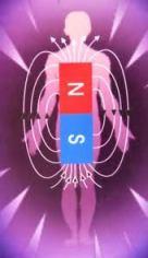 biomagnetismo bilbao