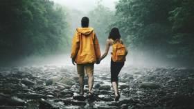 desordenes amorosos descodificación psicologia  psicoanalítica bioneuroemoción